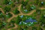 Локация - лес