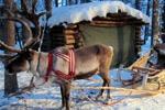 «Финляндия - всего 10 мест привлекают 87% туристов»