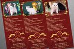 Печатная продукция для кошачьего питомника