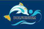 Перевод сайта дельфинариев в Крыму Ru => ENG