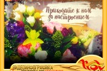 "ПРОМОРОЛИК для студии флористики ""ДИКИЙ ПИОН"""