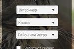 Сайт поиска ветуслуг мобильная версия