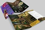 Лифлет для кафе Dino adventure park