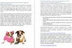Сео-текст для интернет-магазина товаров для собак