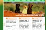 Социальная сеть владельцев домашних питомцев PetWeb