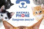 Копи для ветеринарного онлайн-сервиса