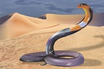 в песках