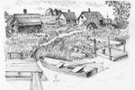 д. Тимошинская. Бани на берегу оз. Шабзеро