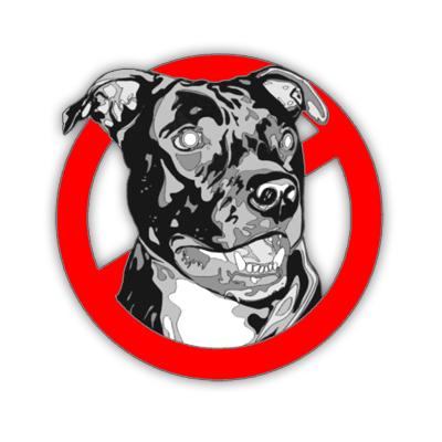 моя собако Пуся