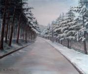 Первый Снег (Иджеван, набережная)