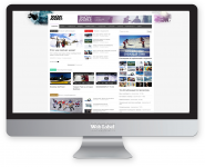 Менеджмент интернет-проекта SNOWANDFLY