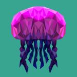 Jellyfish polygon