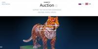Благотворительный аукцион ВЭФ 2016 и 2017 годов
