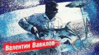 Шапка ТВ передачи на канале Охота и Рыбалка