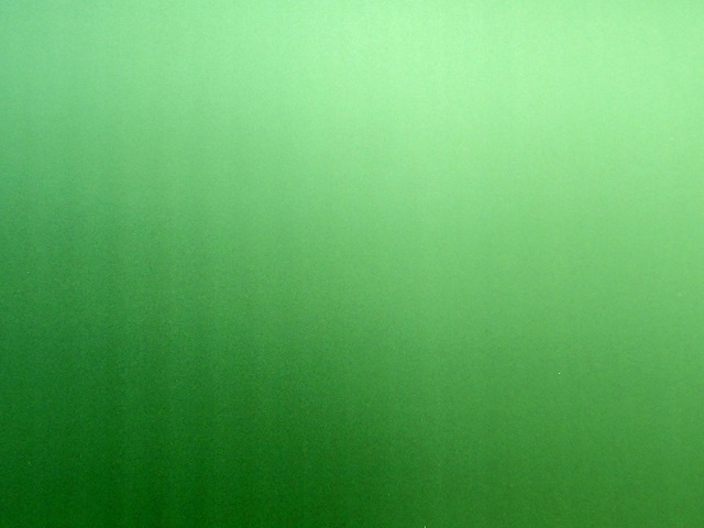 Рвота зеленого цвета: причины появления