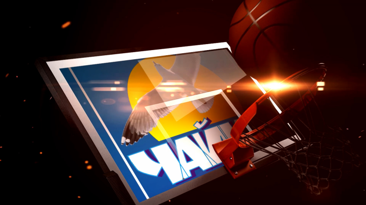"""Детская баскетбольная команда """"Чайка"""""""