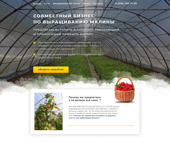 Совместный бизнес по выращиванию малины