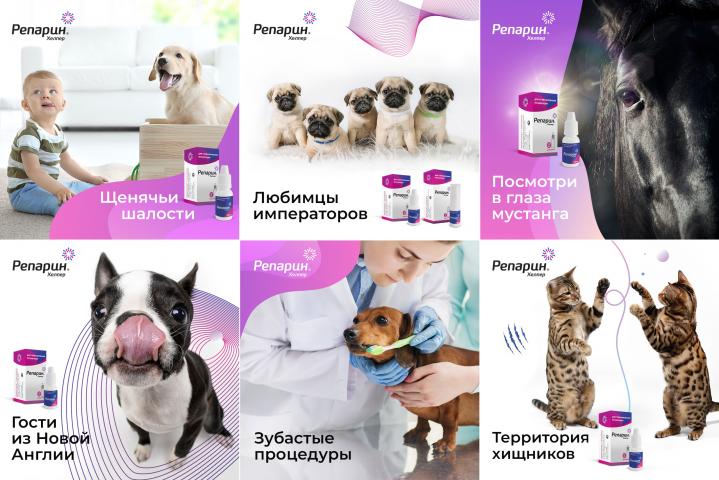 Продвижение ветеринарного препарата